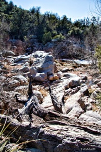 Rocks, trees 0746 copyright small